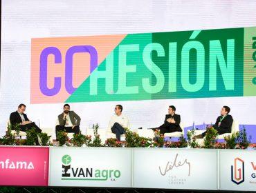 img-prev-cohesion